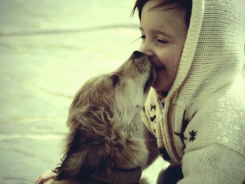 децата и кученцата143