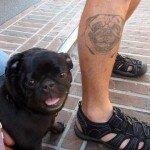 Pug tattoos 24