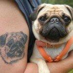 Pug tattoos 32